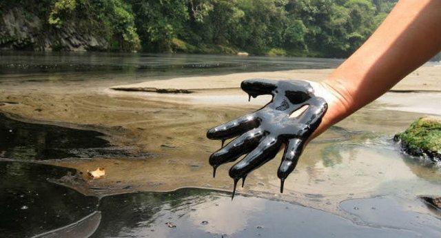 """Cento pozzi di petrolio nel parco nazionale, quando il loro business è più importante di """"quattro miseri alberi""""…!"""
