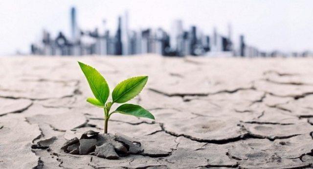 I 5 maggiori rischi ambientali che mettono in pericolo il Pianeta