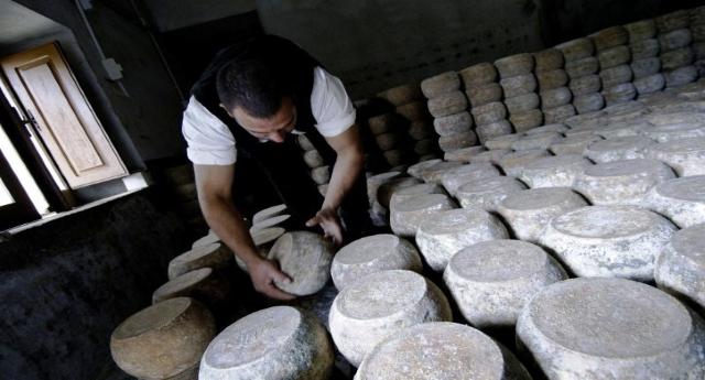 Fiore Sardo: aiutiamo i pastori sotto attacco, compriamo i loro prodotti