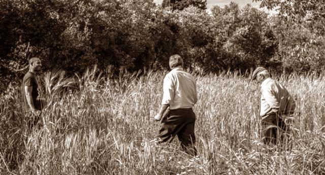La riscoperta dei grani antichi del Salento in un documentario finanziato dal basso