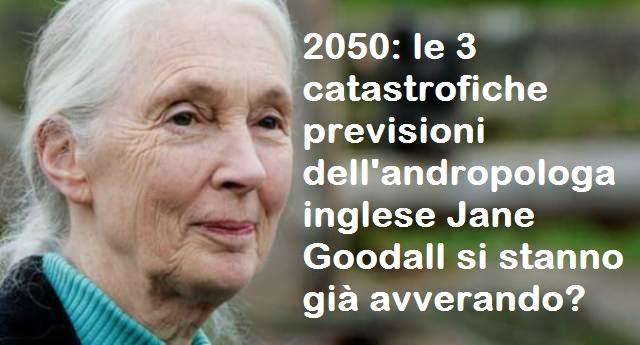 2050: le 3 catastrofiche previsioni dell'andropologa inglese Jane Goodall si stanno già avverando?