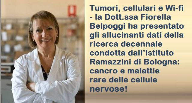 Tumori, cellulari e Wi-fi – la Dott.ssa Fiorella Belpoggi ha presentato gli allucinanti dati della ricerca decennale condotta dall'lstituto Ramazzini di Bologna: cancro e malattie rare delle cellule nervose!