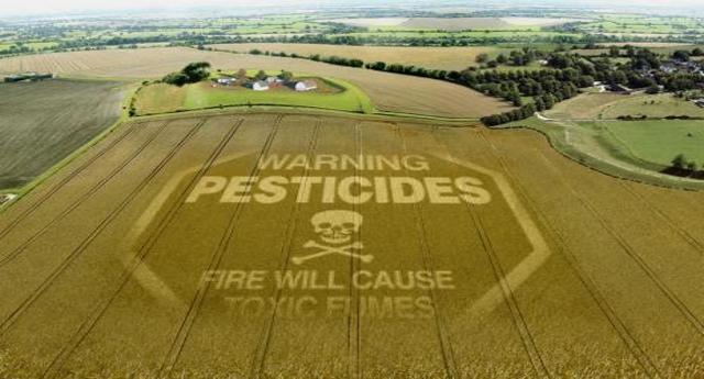 Appello degli scienziati: «Scendere dalla giostra dei pesticidi»
