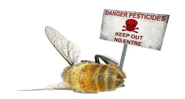 pesticidi