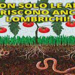 lombrichi